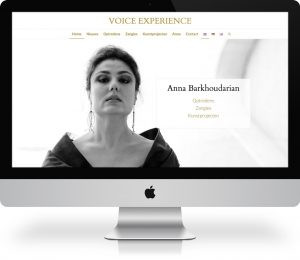 Webdesign Voice Experience